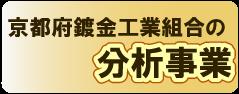 京都府鍍金工業組合,分析